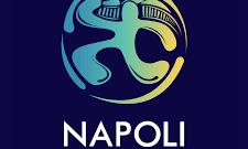 Napoli running